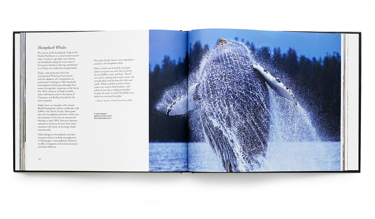 MM_book_02